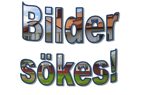 Bilder_Sokes